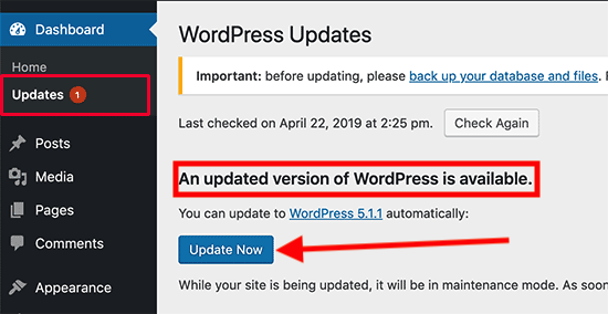 updating wordpress software
