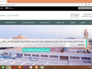 Website Amira nora Testing