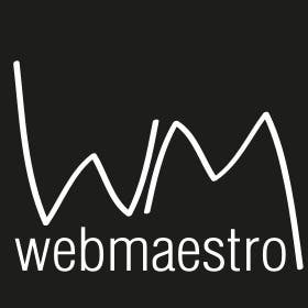 Profile image of webmaestro2013