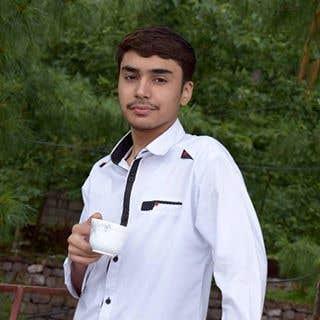 Essay writers pakistan