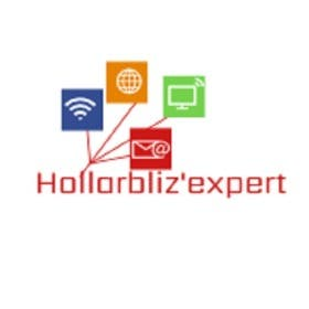 Profile image of hollarblizexpert