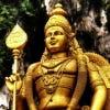 Photo de profil de Vishnurajan31