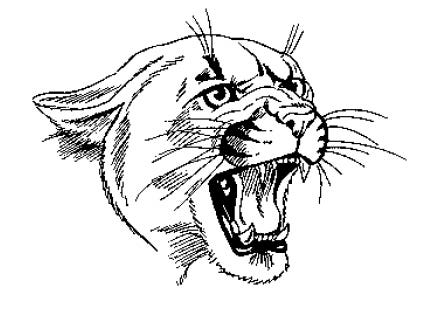Profile image of wildcat