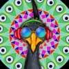 Gambar Profil AviralTyagi99