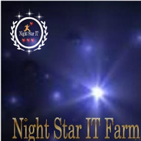 Profile image of nightstarit