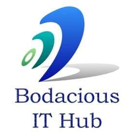 Profile image of bodaciousithub
