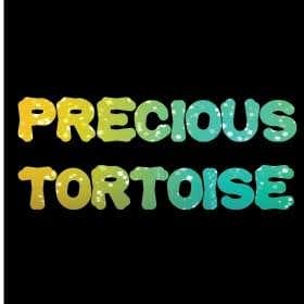 Profile image of precioustortoise
