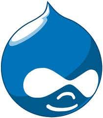 Profile image of drupalwebmaster